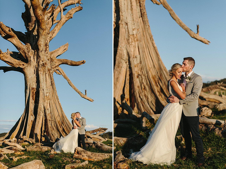 willow-farm-wedding-maz-luke-198